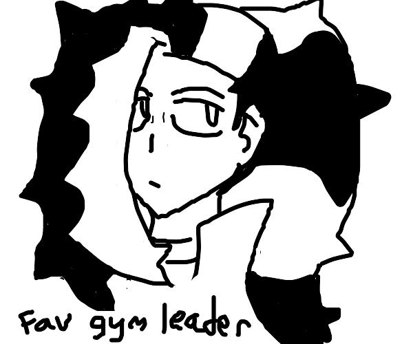 Your favorite pokemon gym leader