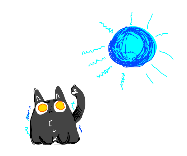 cat shivering while a cold sun shines on it