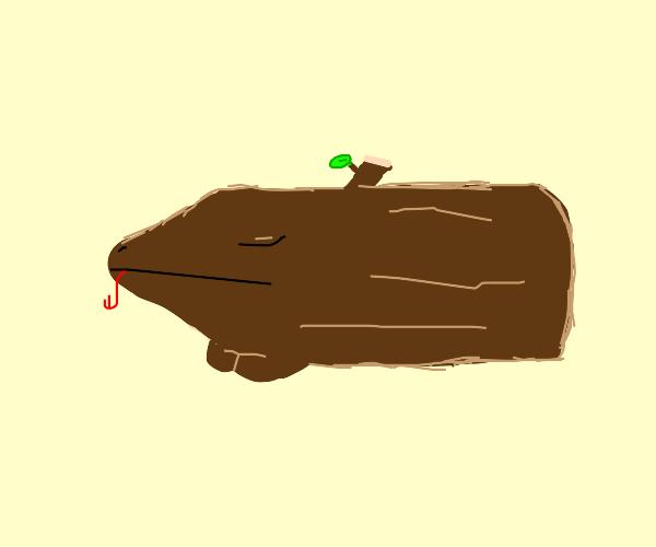 sleeping log wizard