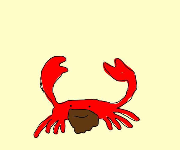 Bearded Crab