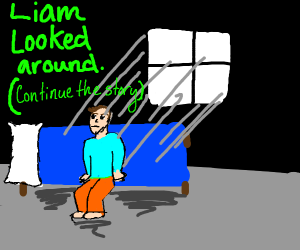 Liam woke up (continue the story)
