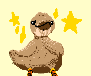 Bird is confident