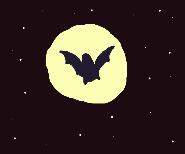 A Bat Falling From the Sky at Night
