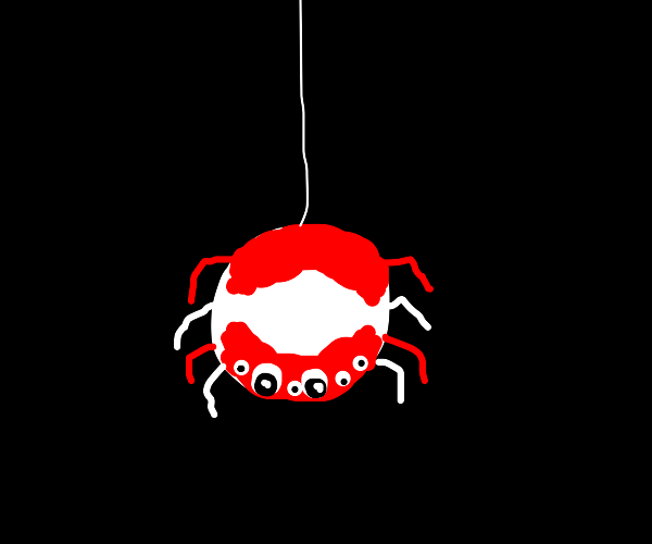 red and white spider