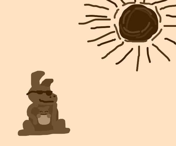 Kangaroo loving/enjoying the sun