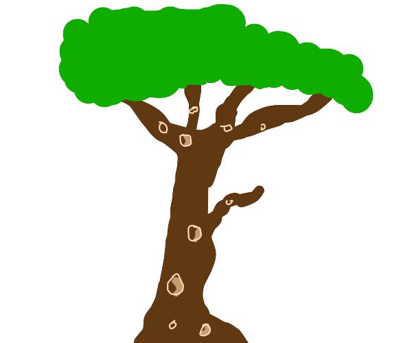 tree trypophobia