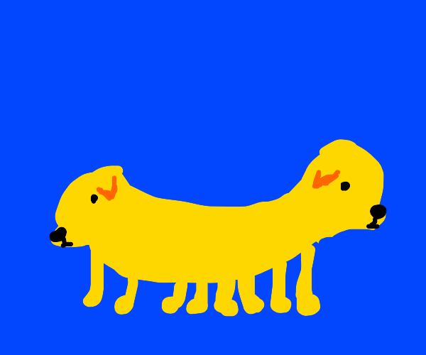 Yellow Conjoined Baby Puppies
