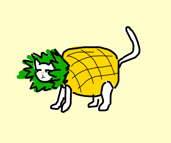 Cat with pineapple body