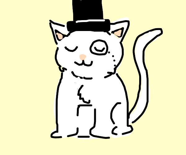 Classy Cat