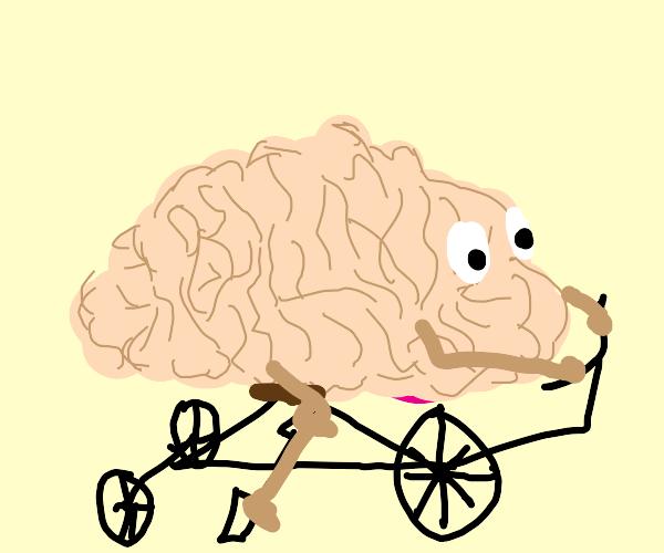 Brain riding a three-wheeled bike