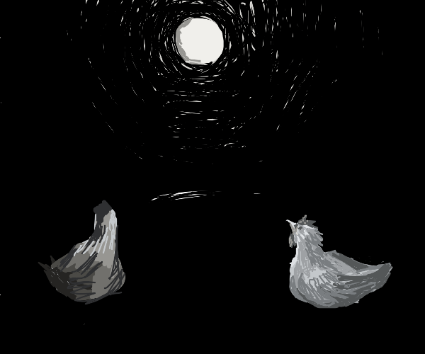 2 chickens watching the beatuiful moon