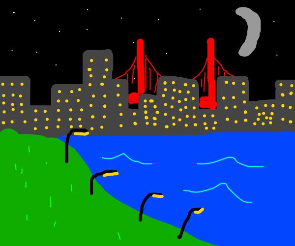 City at night with a bridge and lake