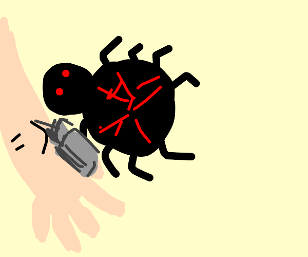 Spider Tattoo Artist