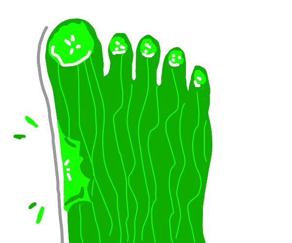 Cucumber toes
