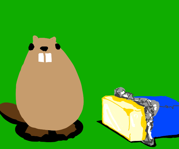 A beaver next to some butter