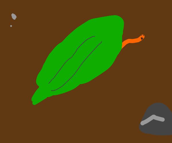 Cute worm under leaf