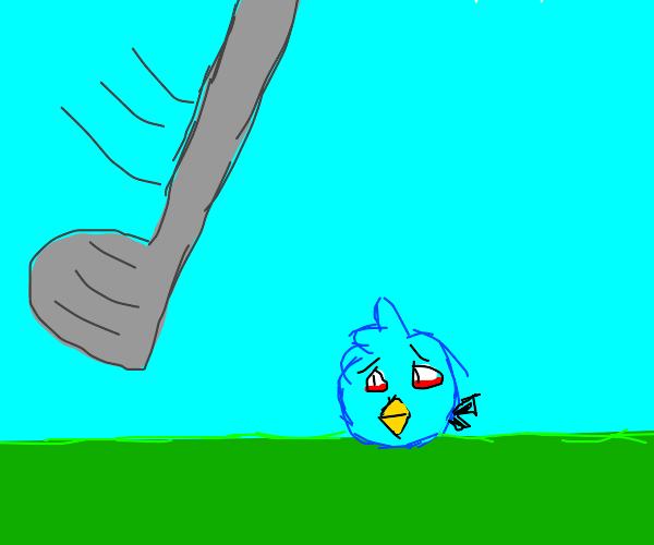 Angry Bird golf