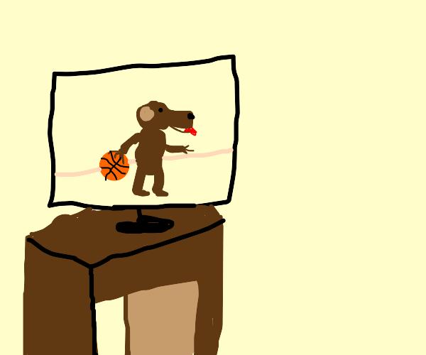 Dog plays Basketball on tv