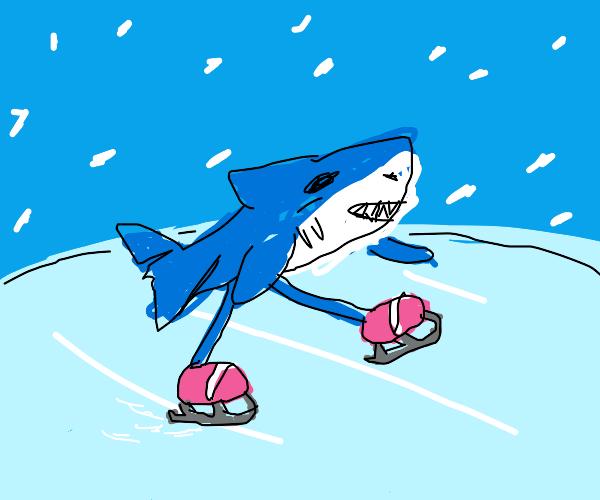 Sports shark ON ICE!