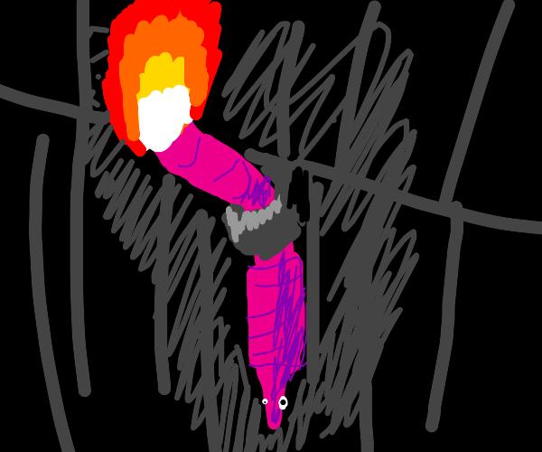 torchic worm
