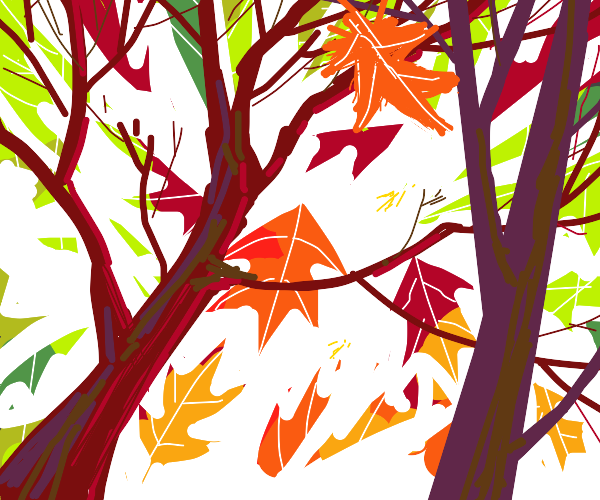 leaves falling from trees