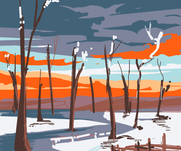Bare trees in the winter by a sunset