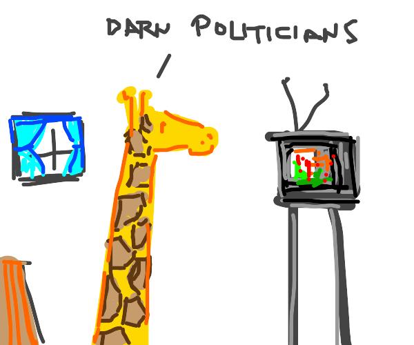 Giraffe watching TV