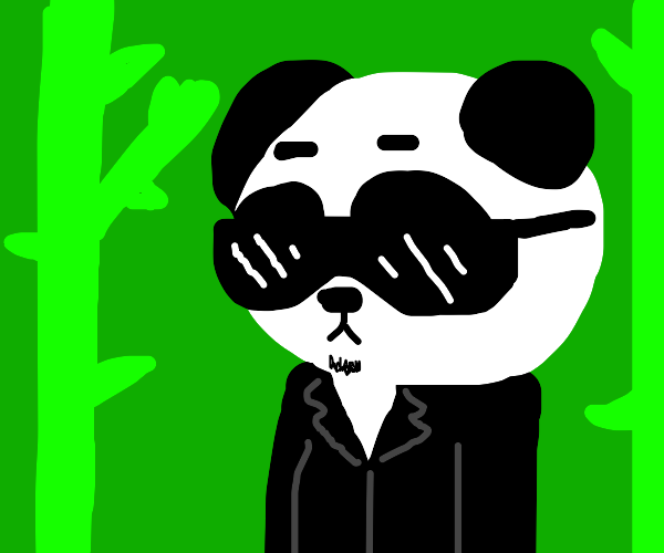 Exceptionally cool panda