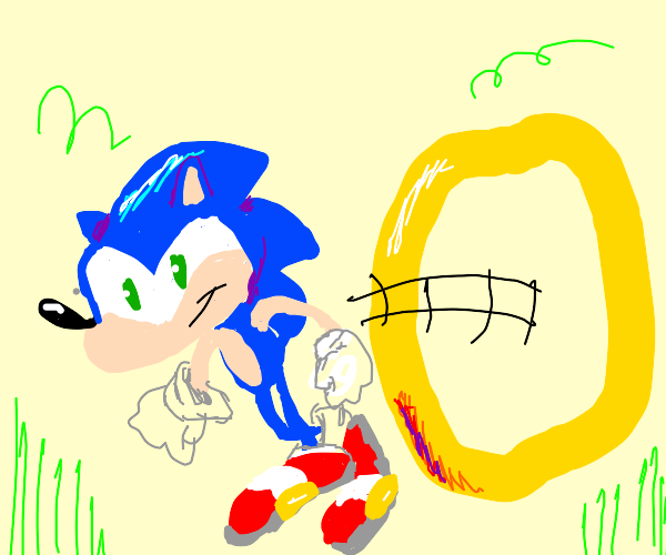 sonic goes through a ring