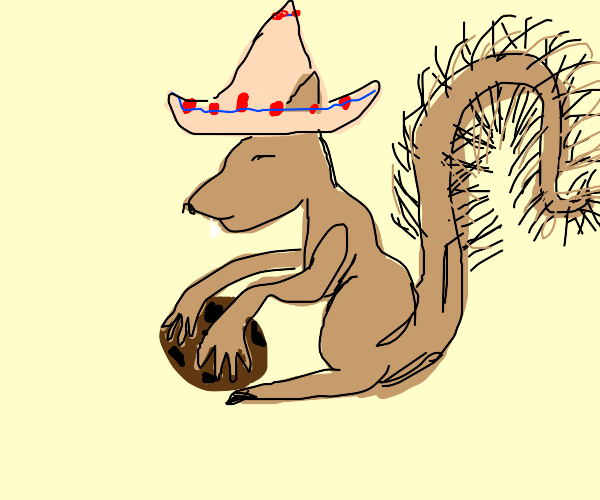 Squirrel in a sombrero steals a cookie