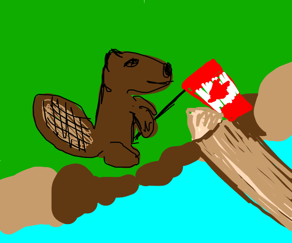 a clearly canadian beaver