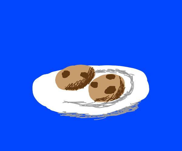 2 Cookies in a plate