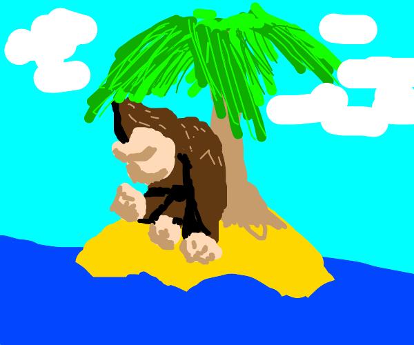 Donkey Kong on a stranded island