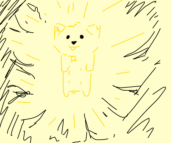 yellow dog absorbs power from the universe