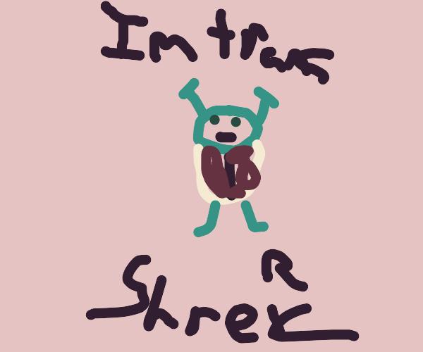 Shrek comes out as trans