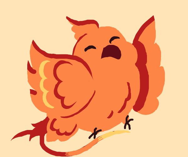 Phoenix Parrot