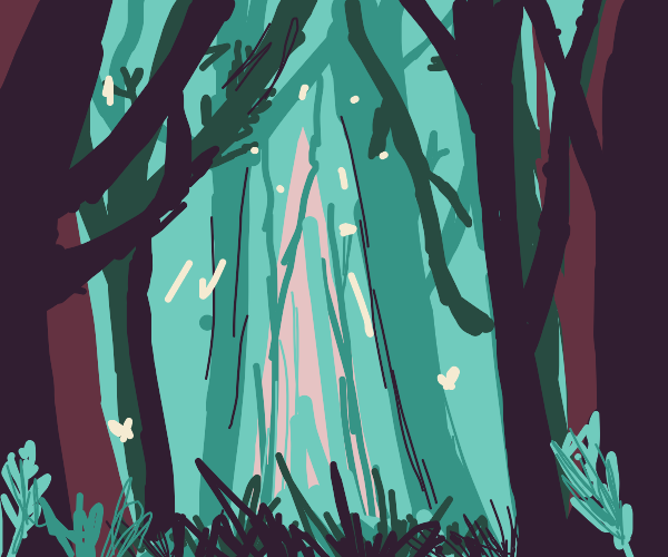 Forest in the evening