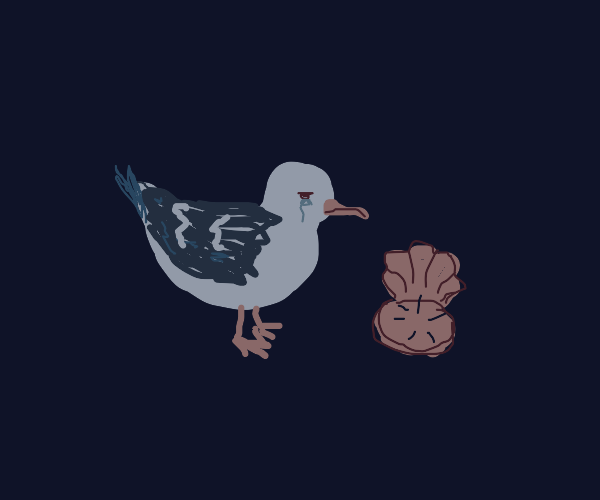 Seagull sad because there is nothing in clam