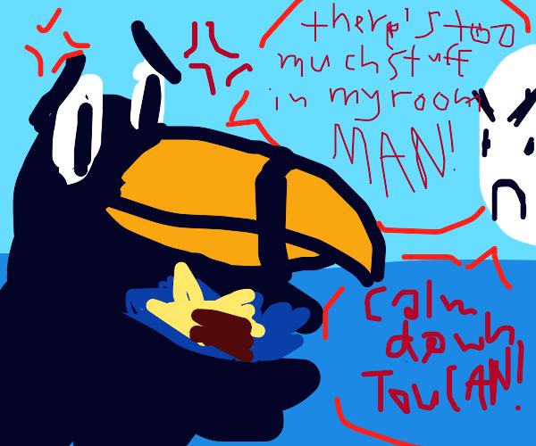 toucan worried over stuff in his room
