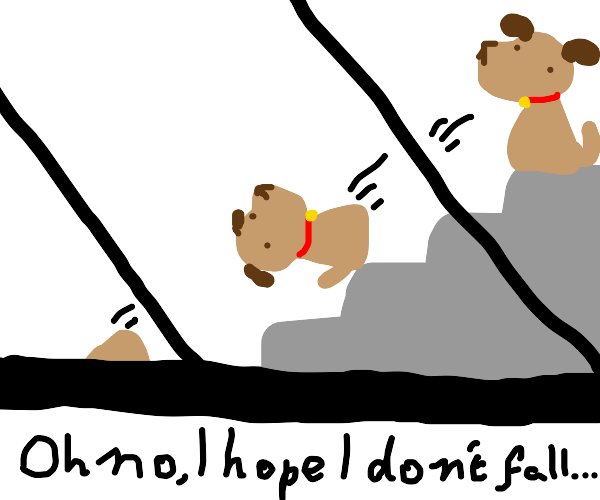 A dog falling down the stairs. ):