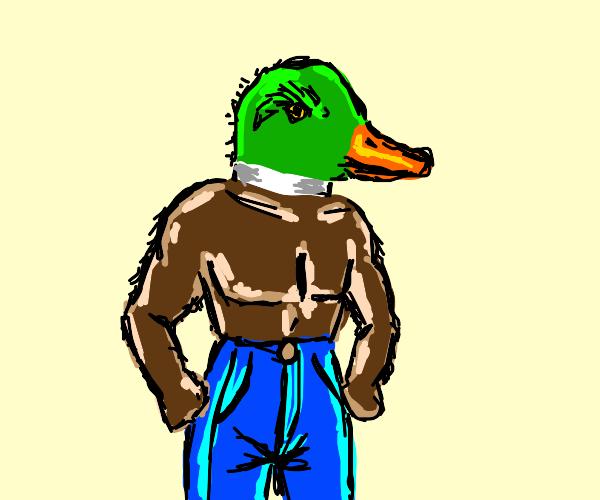 duck in blue jeans