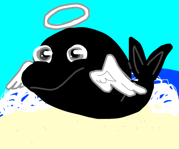 A whale with angel wings and a halo