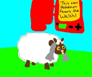 The new sheep Pokemon, Wooloo