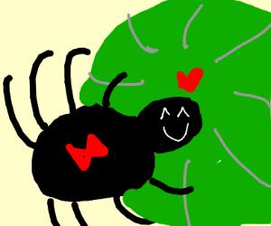 cute spider LOVES watermelon