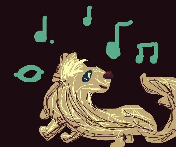 Ferret Dancing
