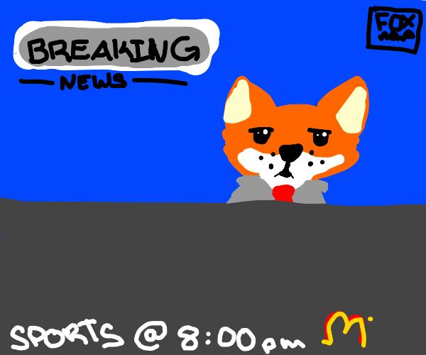 fox news but its actually a fox