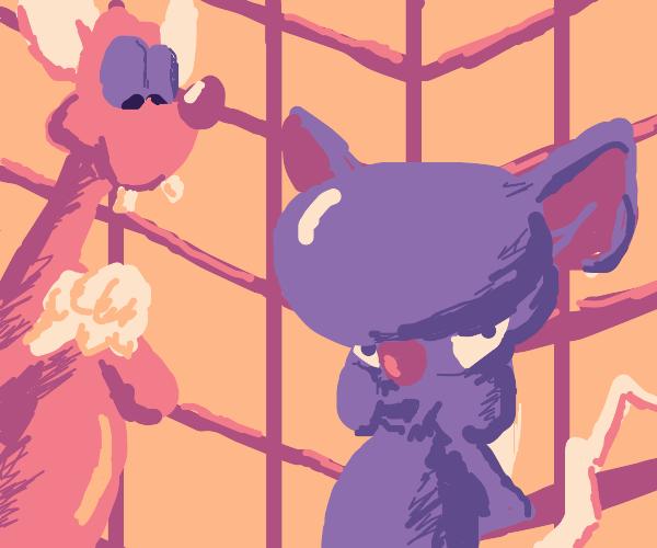 Pinky & The Brain but random colors