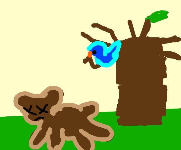 a bird lokking at a dead bear