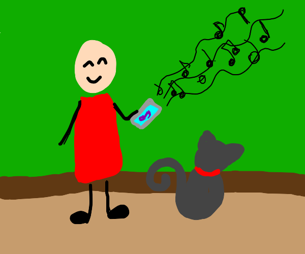 playing a song for your cat