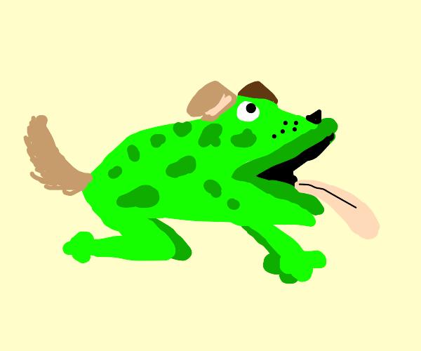 Dog, frog, pog